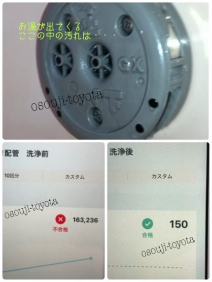 0262B42E-6C6B-44AB-A9CD-635A2EEF4EFD-450x600